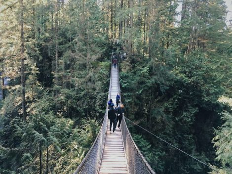 A suspension bridge is a lovely metaphor for liminal space: hanging in between.